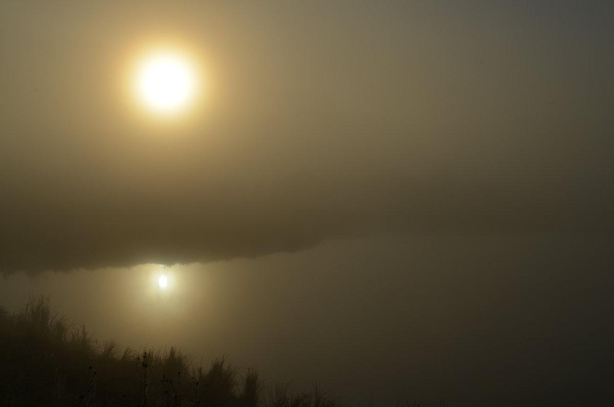 Утренний туман - Вера Андреева