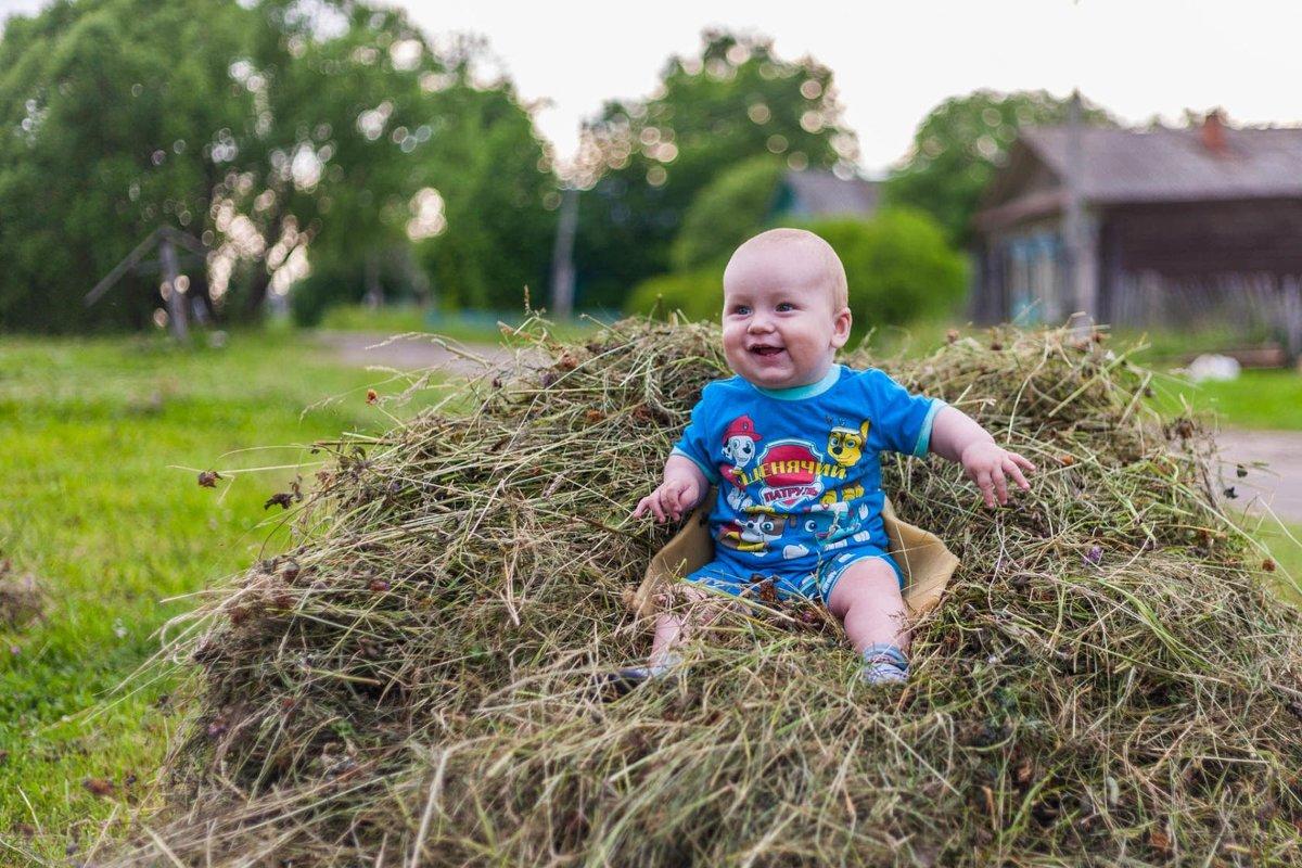 Ребёнок на стоге сена - Максим Туманов