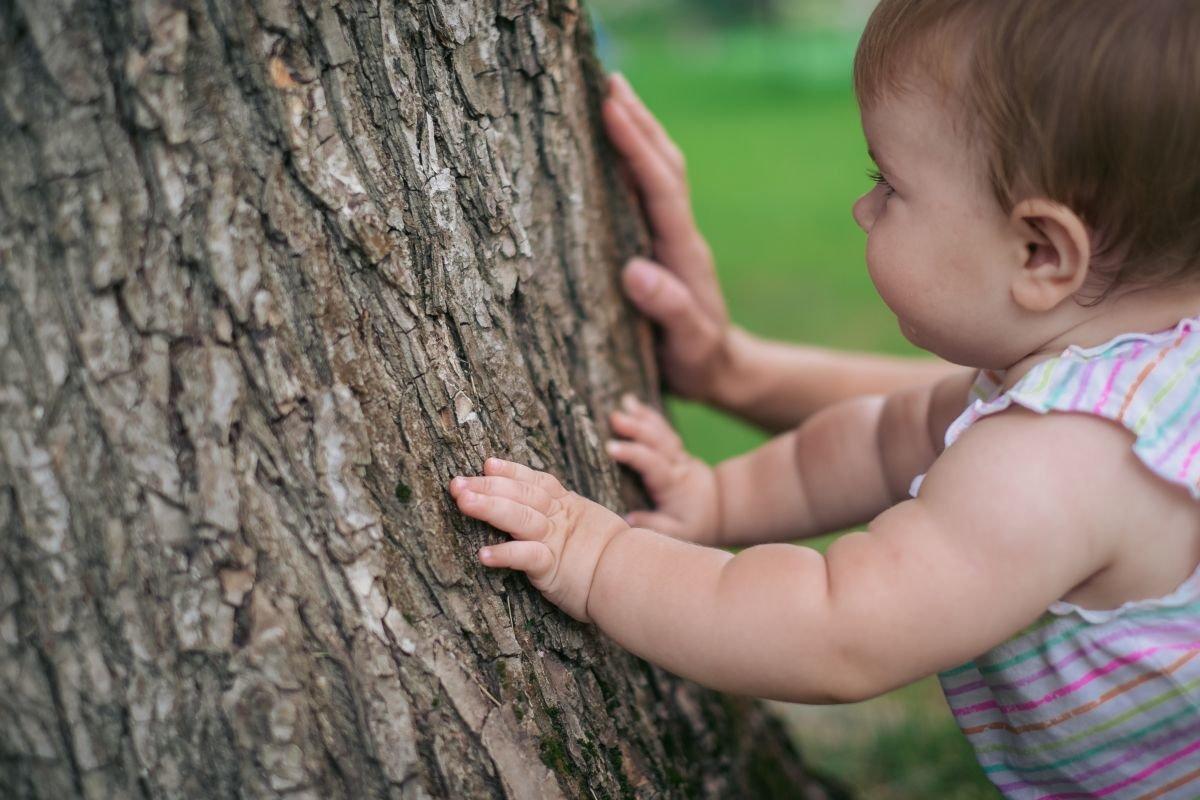 Маленькие пальчики исследуют кору дерева - Angelika Faustova