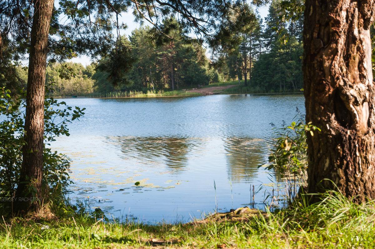 Лесное озеро - kot raz