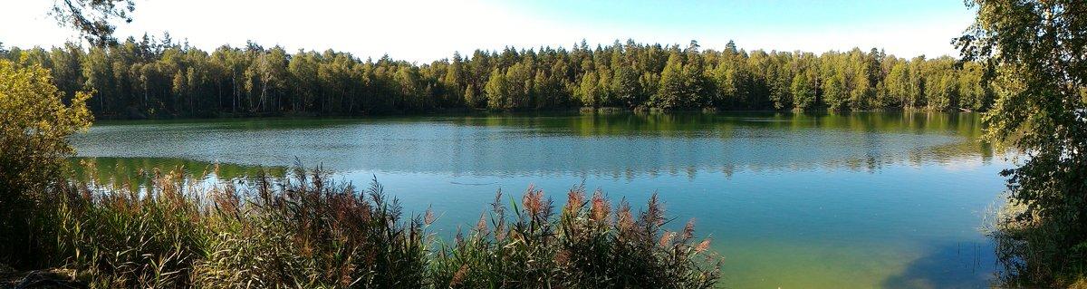 Лесное озеро - Станислав Стариков