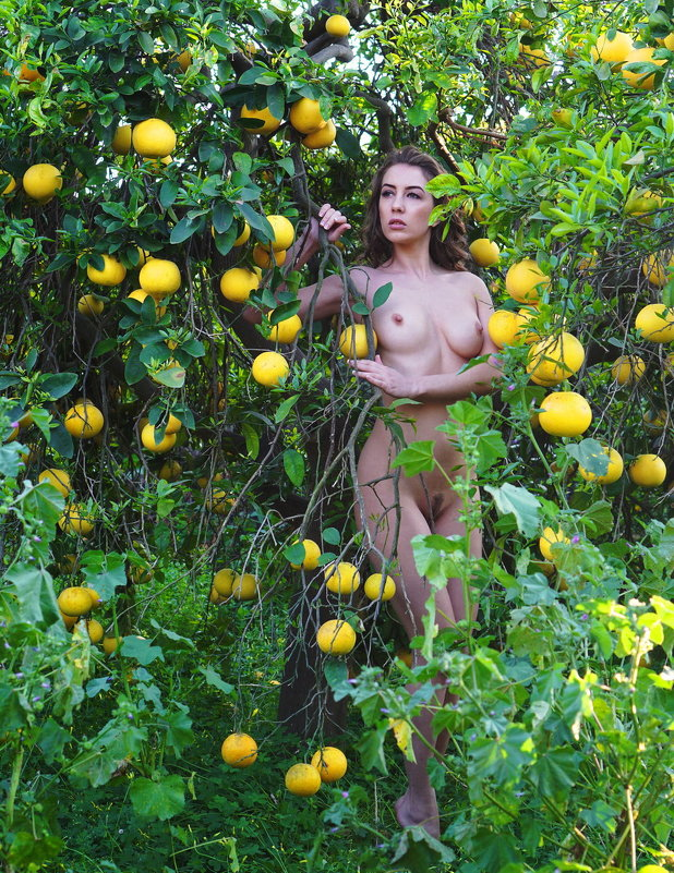Райский сад - михаил кибирев