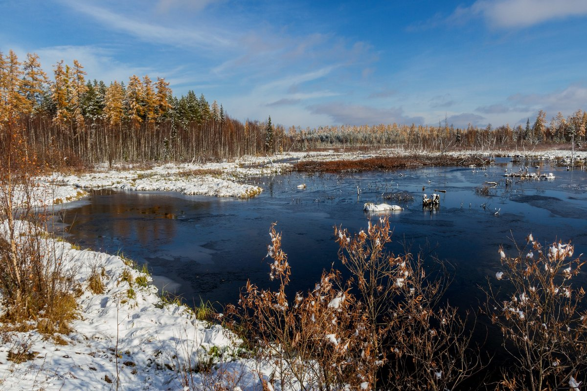 Зима скоро... - Дмитрий Сиялов