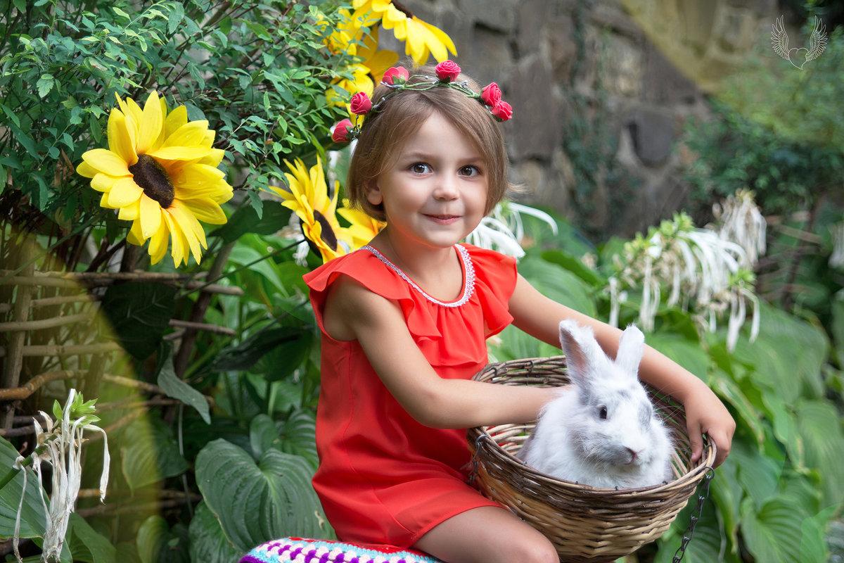 Трогательный зоопарк )) - Райская птица Бородина