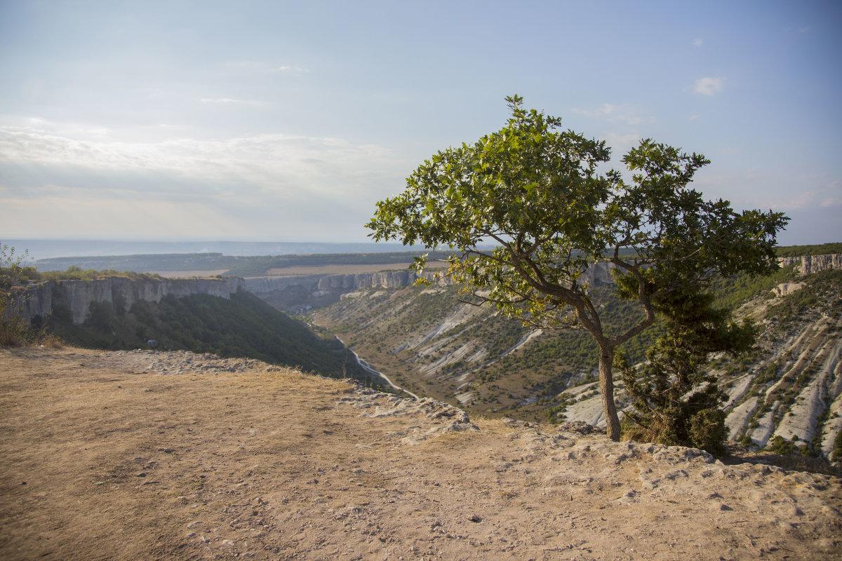В горах Бахчисарая - Alex Mitus