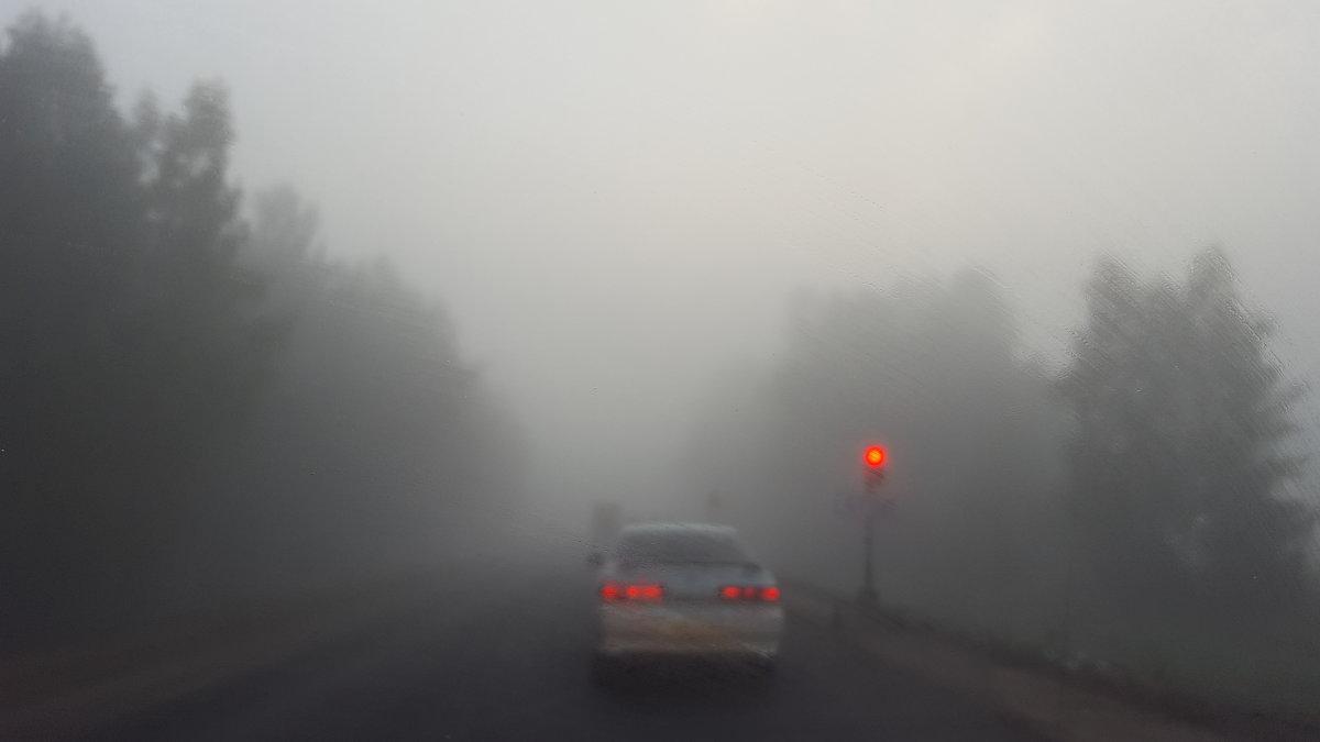 Туман - Константин Шабалин