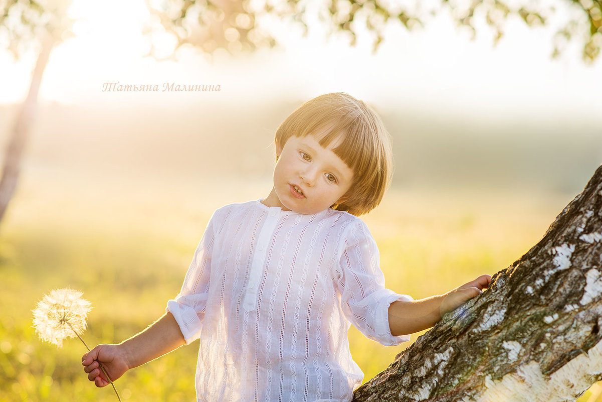 Солнечный мальчик - Татьяна Малинина