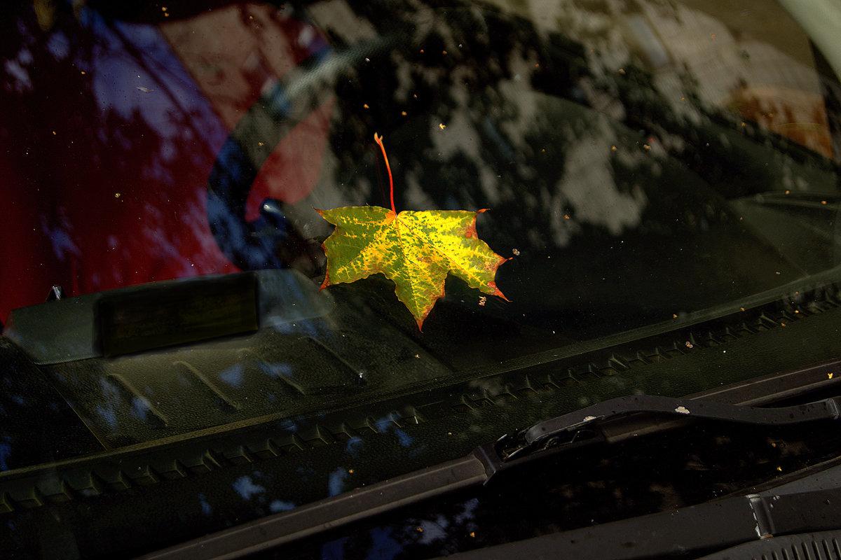 Осенний лист, упавший на стекло , напомнил : время Осени  - пришло! - Александр Ковальчук