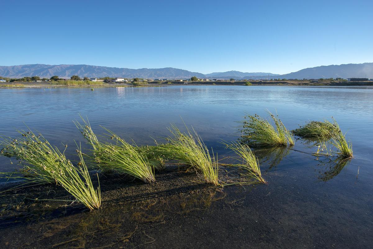 озеро Алаколь - Dmitriy Sagurov