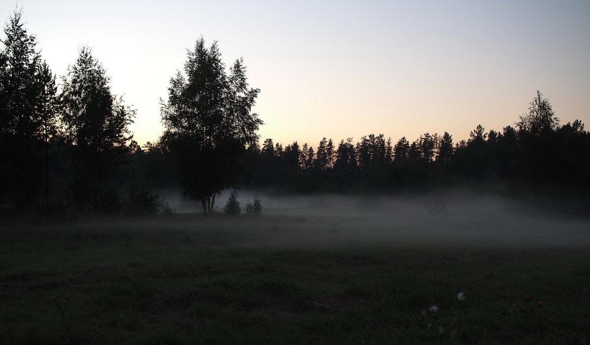 Полоской белого тумана... - Александр Попов