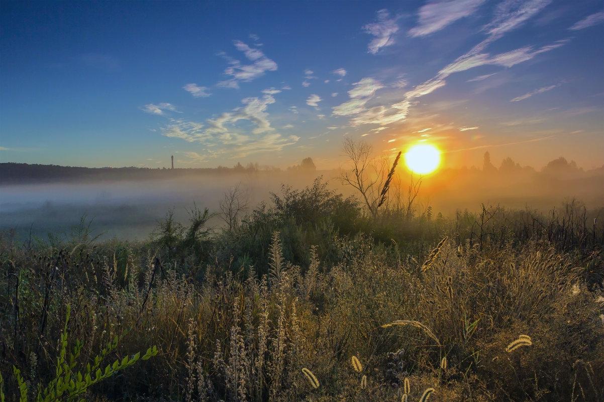 Солнце и туман - Юрий Стародубцев