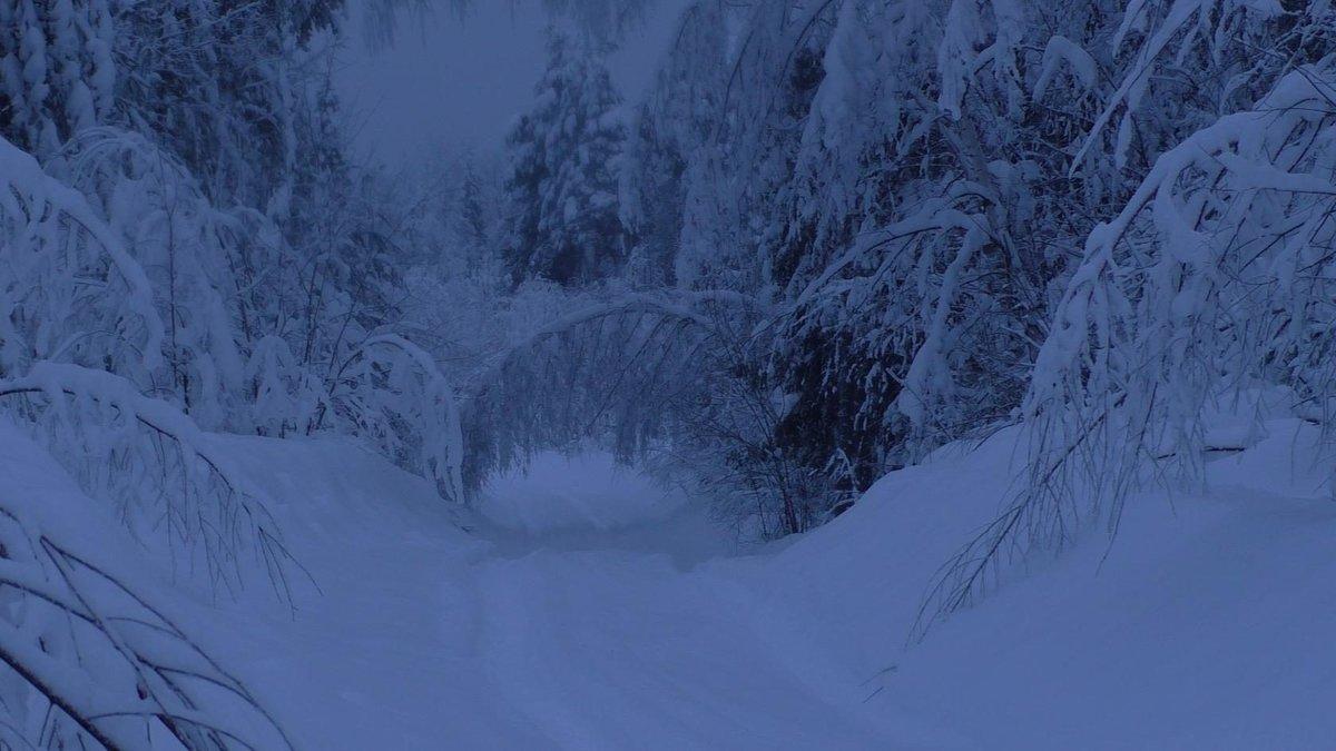 Дорога в зимнюю сказку - Ирина Останина