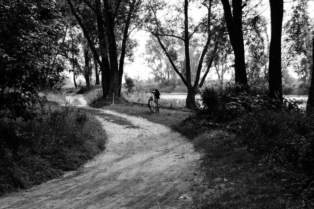 Велосипед ждёт своего хозяина - Света Кондрашова