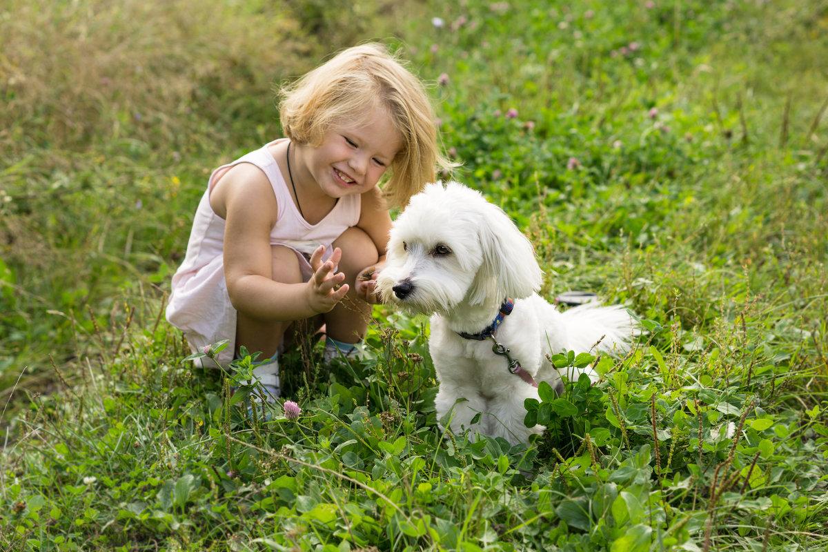 Ребенок и пес. - Ирина Остроухова