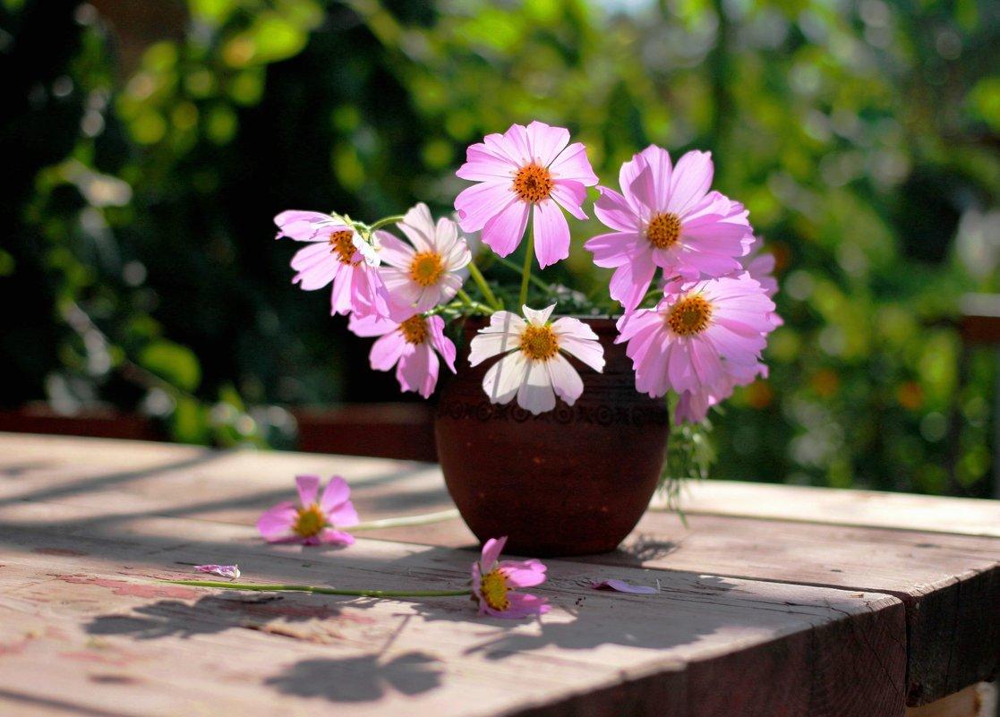 Бабушкины  цветы - Наталья Казанцева