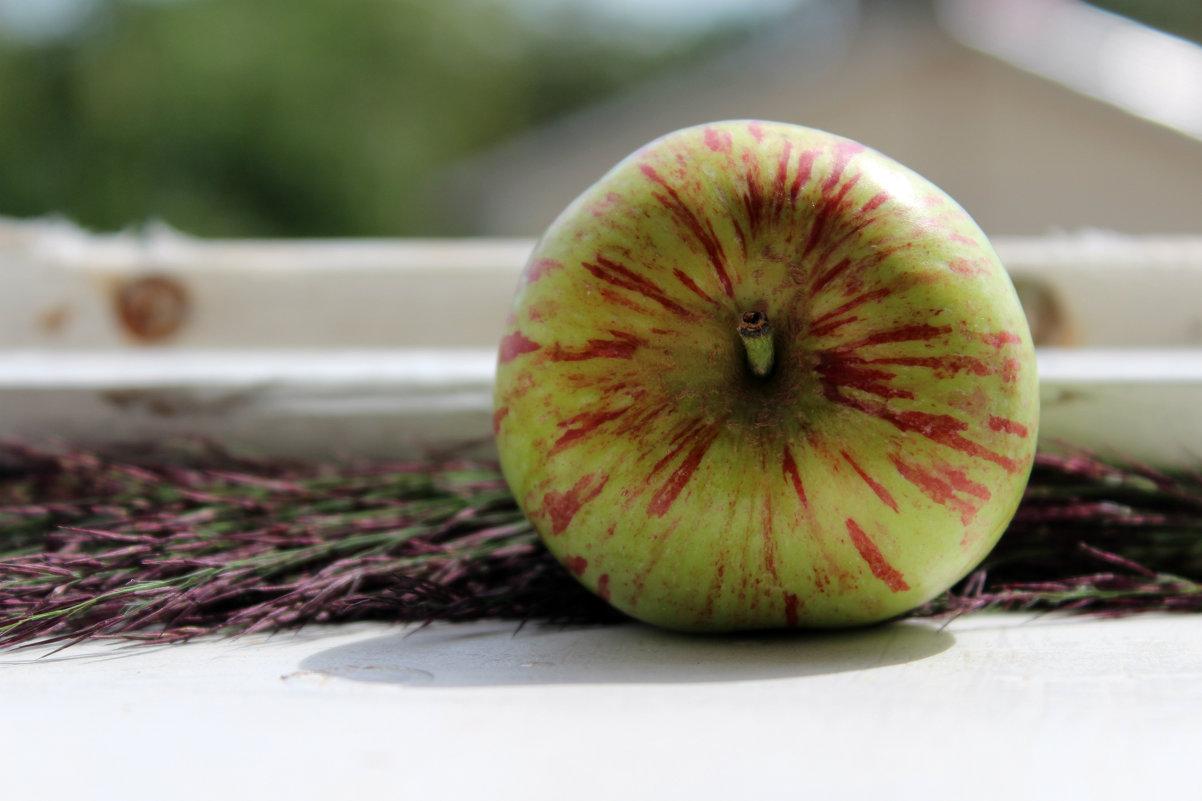 Интересное яблочко :) - Татьяна