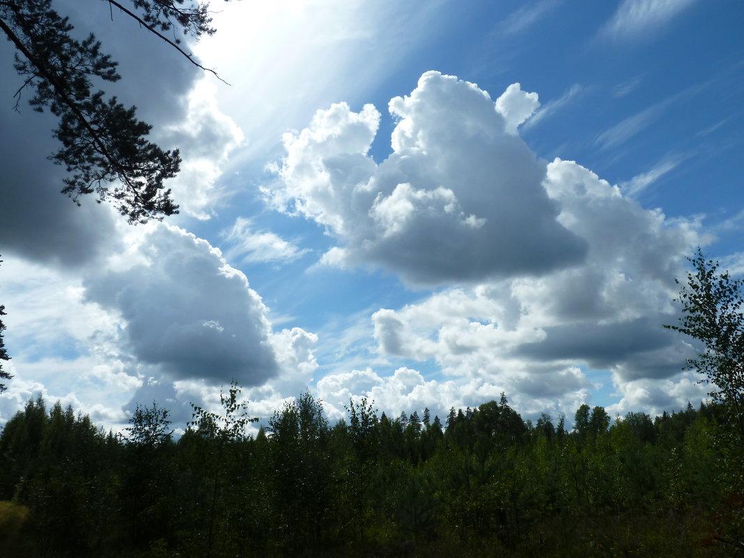облака - Надя Попова