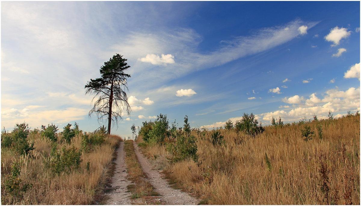 Дорога к облакам - generalov545