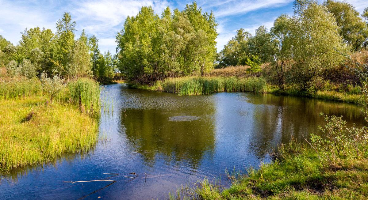 У озера - Любовь Потеряхина