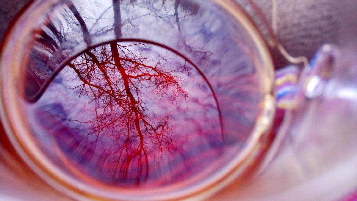 Отражение осени - Ирина Блажи