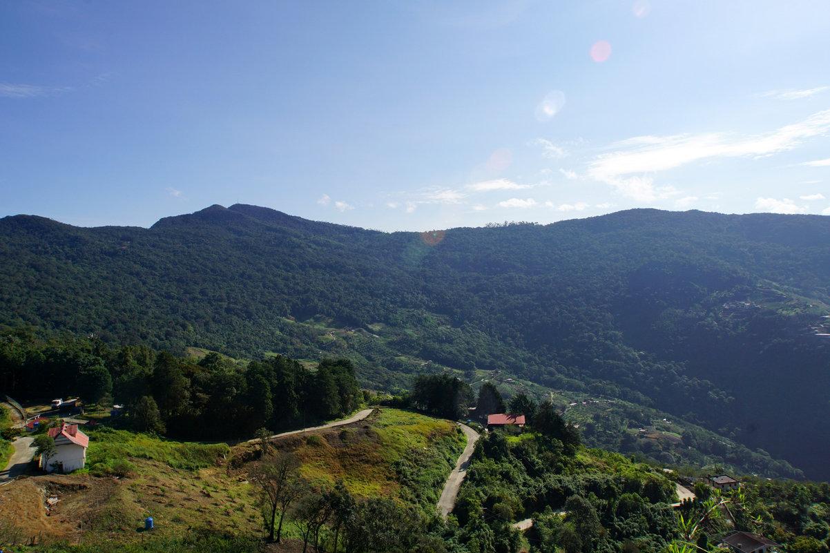 Дорога в горах Венесуэлы - Igor Khmelev