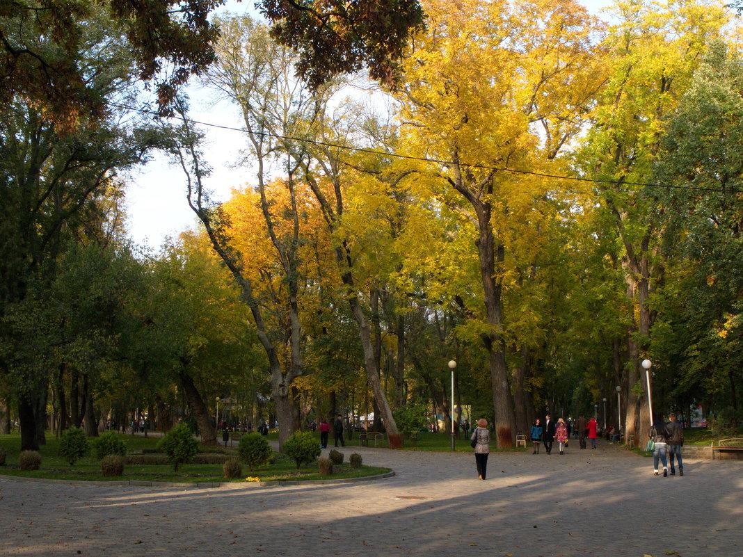 Осень в Краснодаре. - Валерия Калашникова