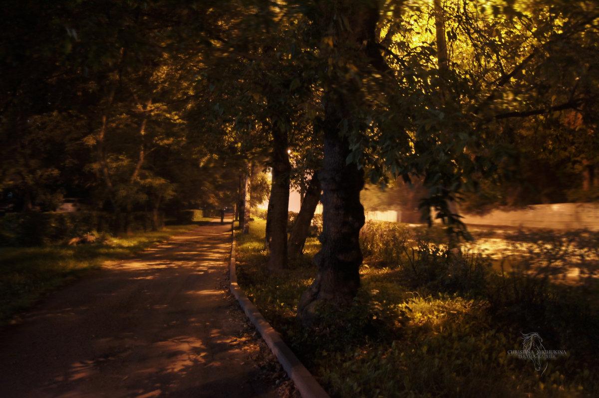 Ночной город - Кристина Щукина