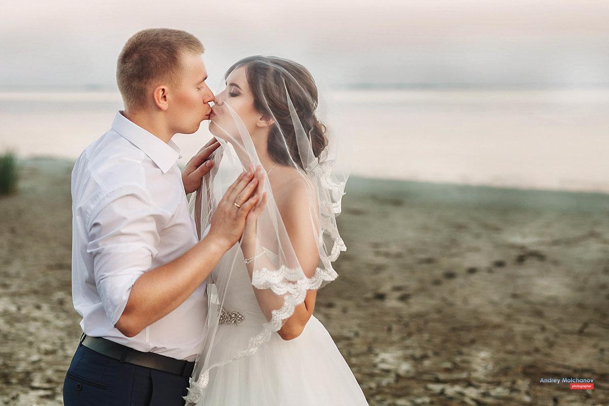 Свадьба  Александра и Евгении - Андрей Молчанов