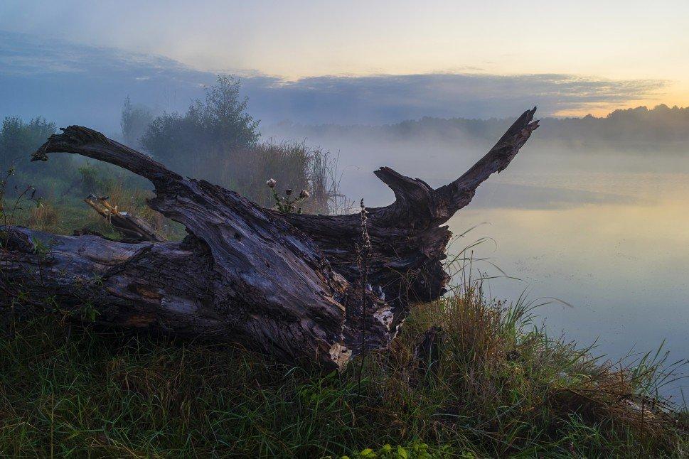 На берегу туманной реки - Сергей Корнев