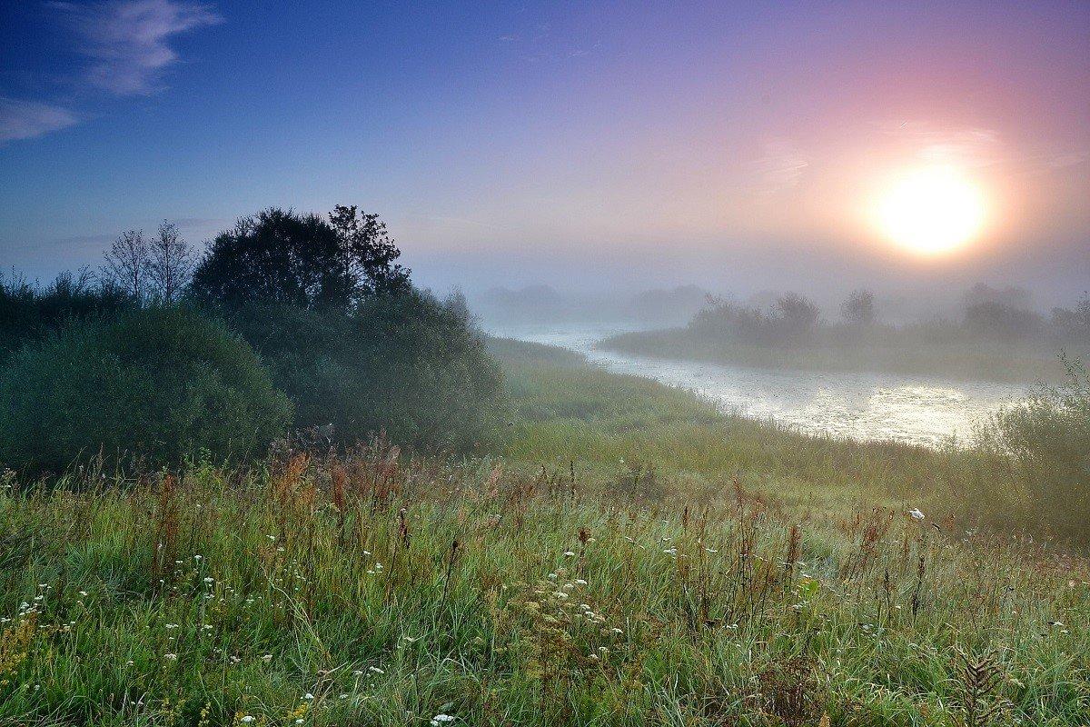 утро - валерий попов