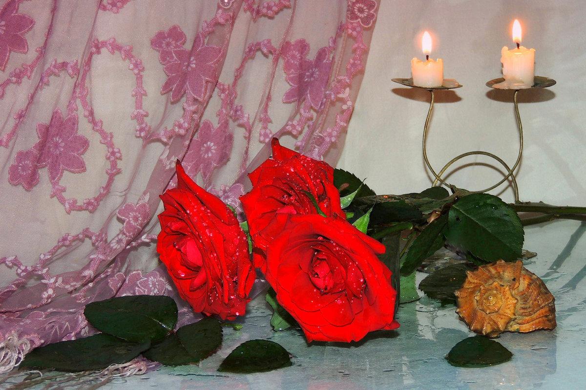 Розы и свечи - Павлова Татьяна Павлова