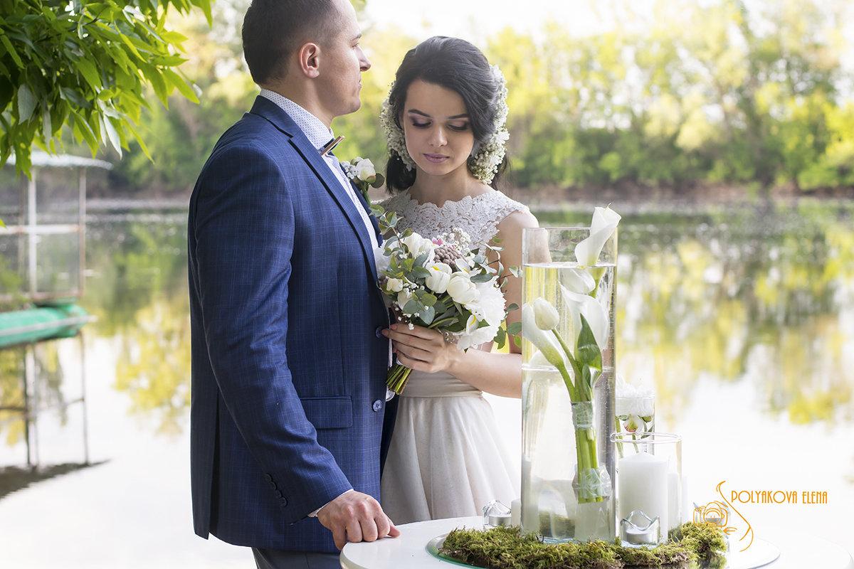 Игорь и Анастасия - Елена Полякова