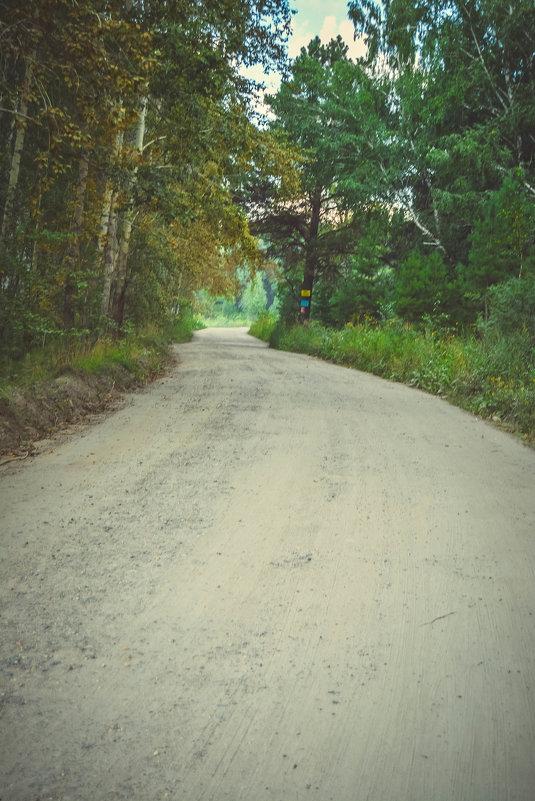 лесные дороги для машин - Света Кондрашова
