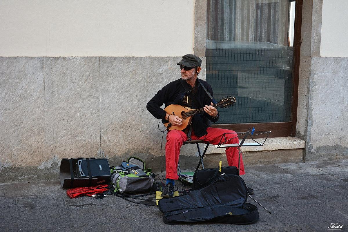 Уличный музыкант. - Paparazzi