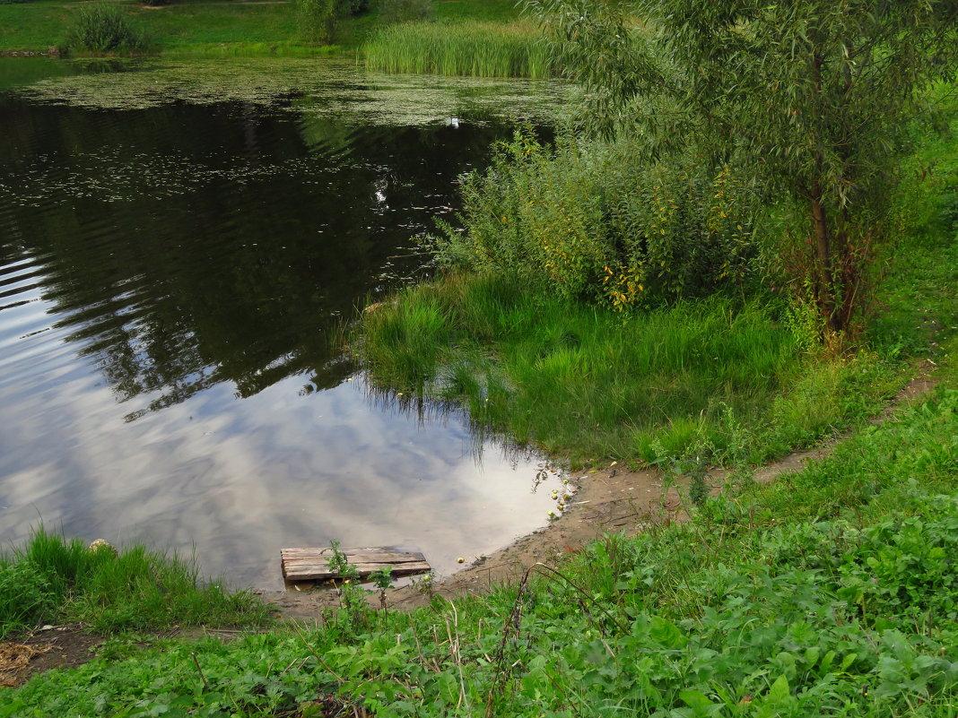 Почти лето - Андрей Лукьянов