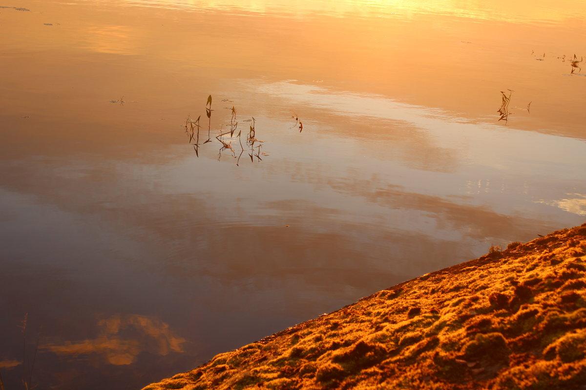 Отражение в воде - Влад В.
