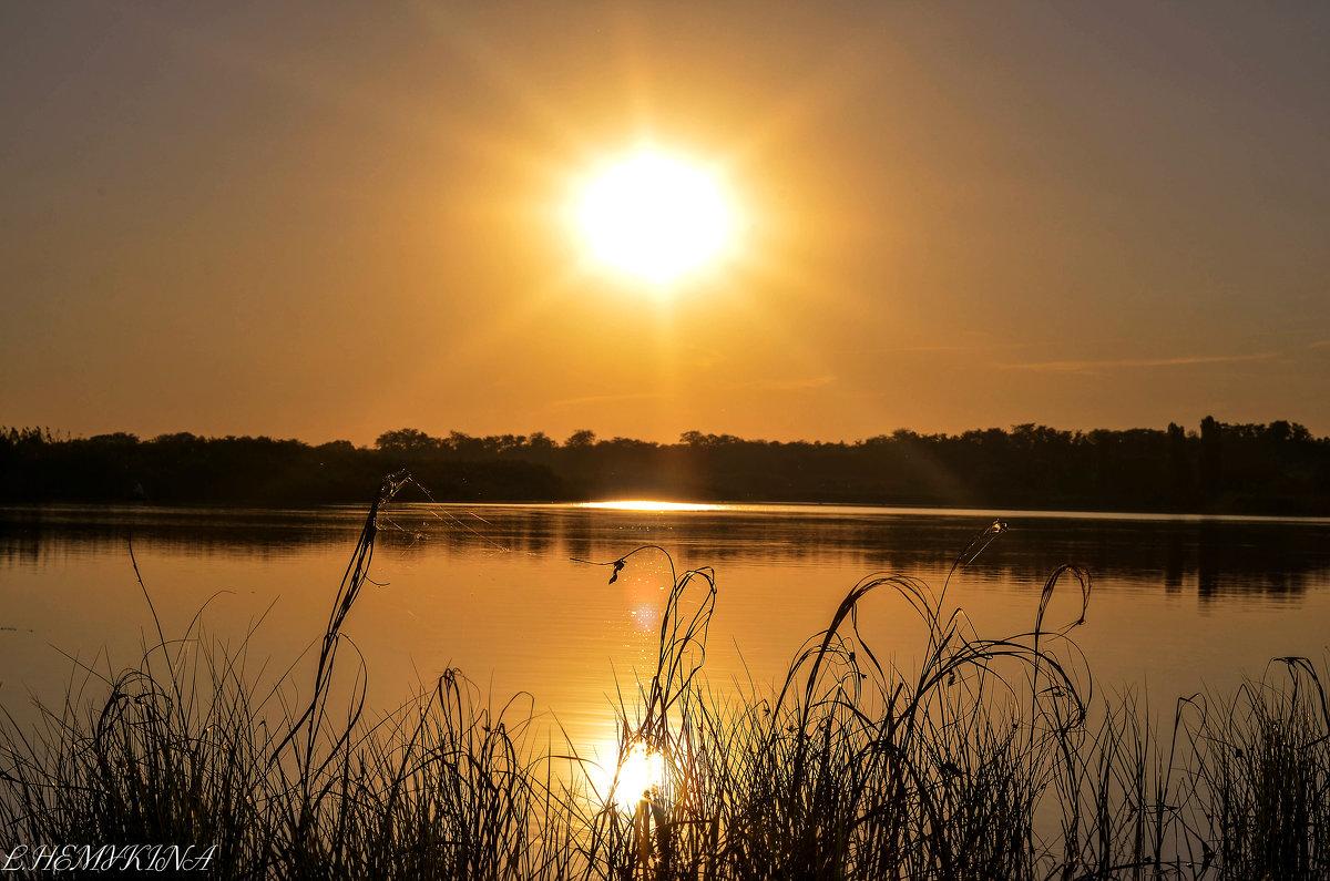 Закатное солнце - LNemykina