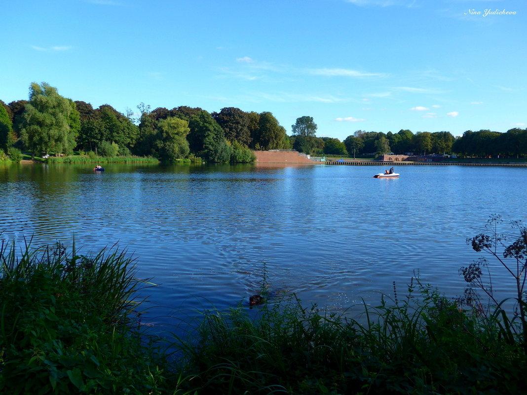 Про озеро в городском парке и плавающию собаку - Nina Yudicheva