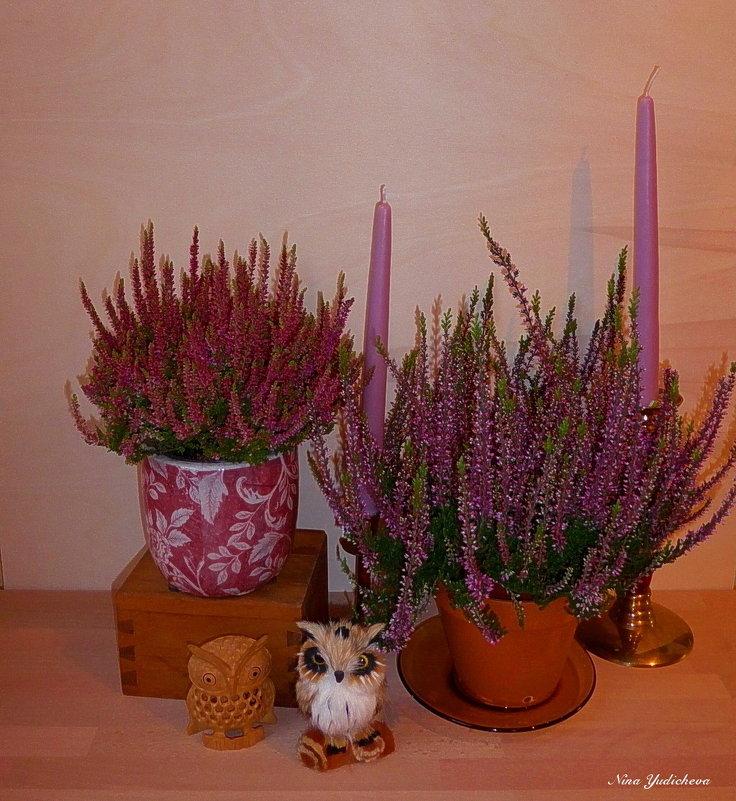 Вереск, совушки и свечи - Nina Yudicheva