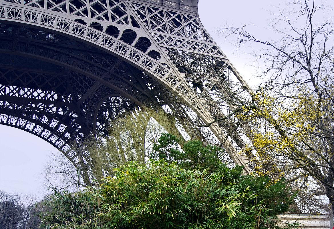 мой Париж - Galina
