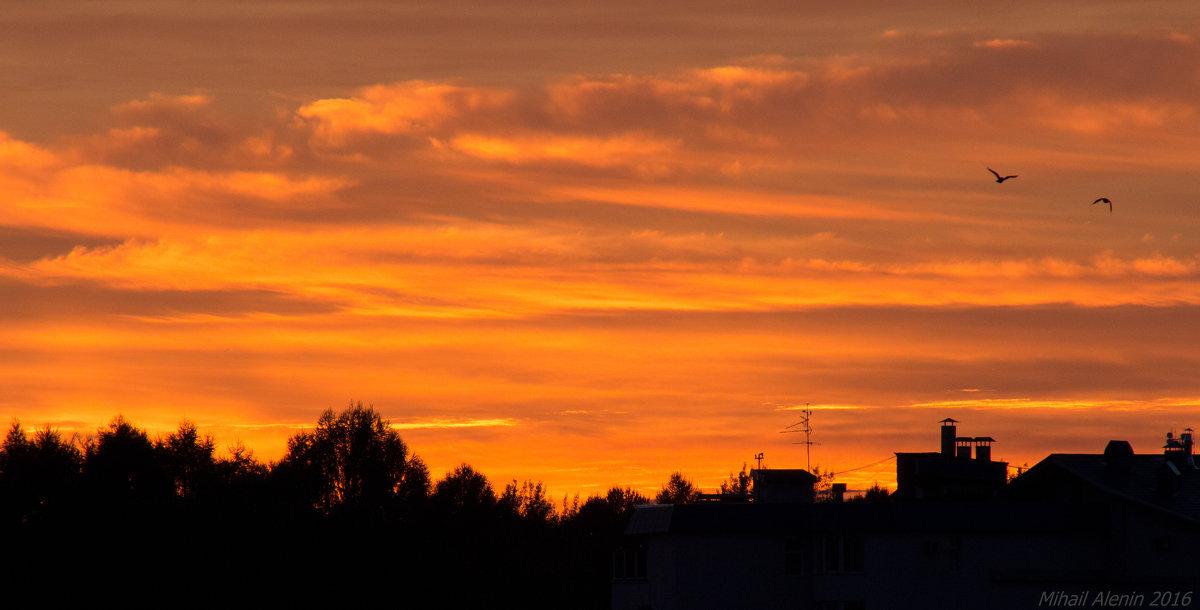 Закат с птичками 6 сентября - Михаил Аленин