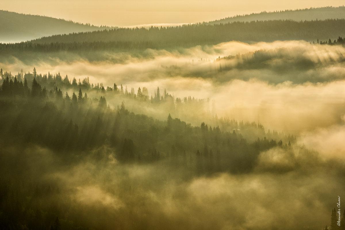 Утро - Александр Чазов