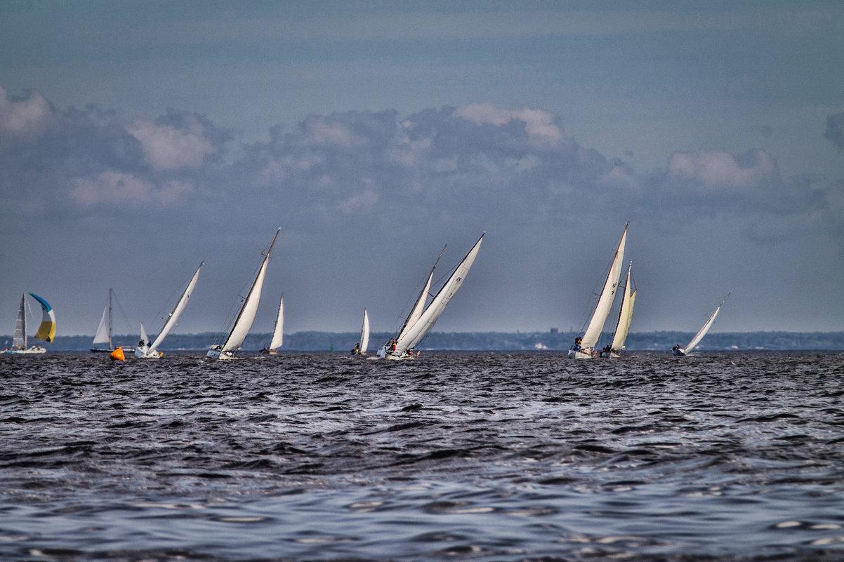 Ораниенбаумский морской фестиваль 2016 - Sasha Bobkov