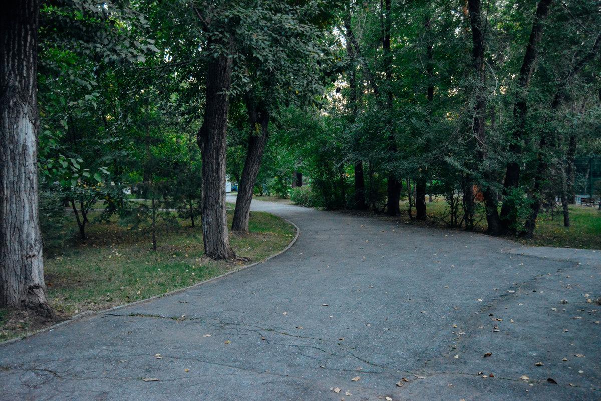 все дороги ведут к нему - Света Кондрашова