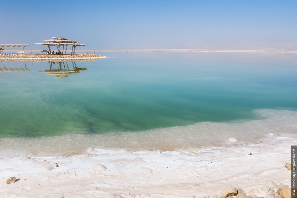 Мертвое море - Анна Аринова