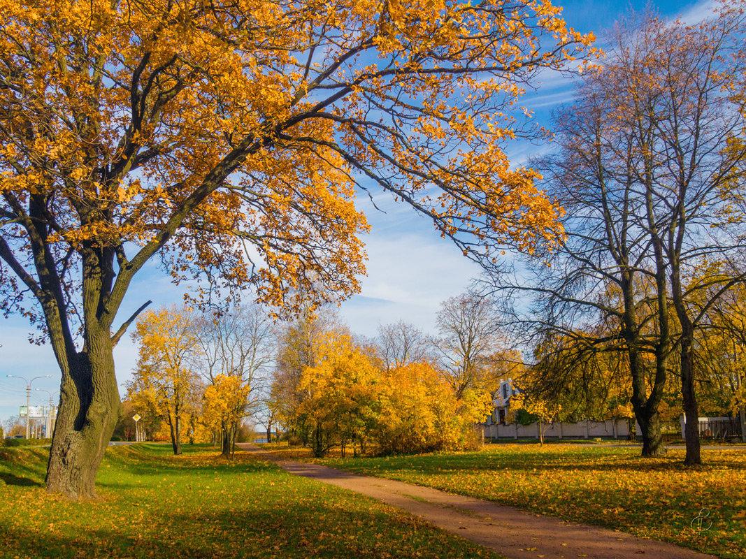 Осень в пригороде 3 - Виталий