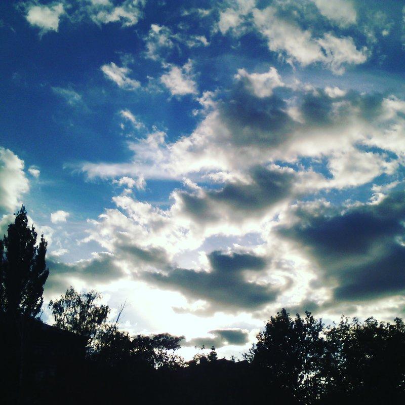 Яркое, яркое небо! - Ольга Кривых