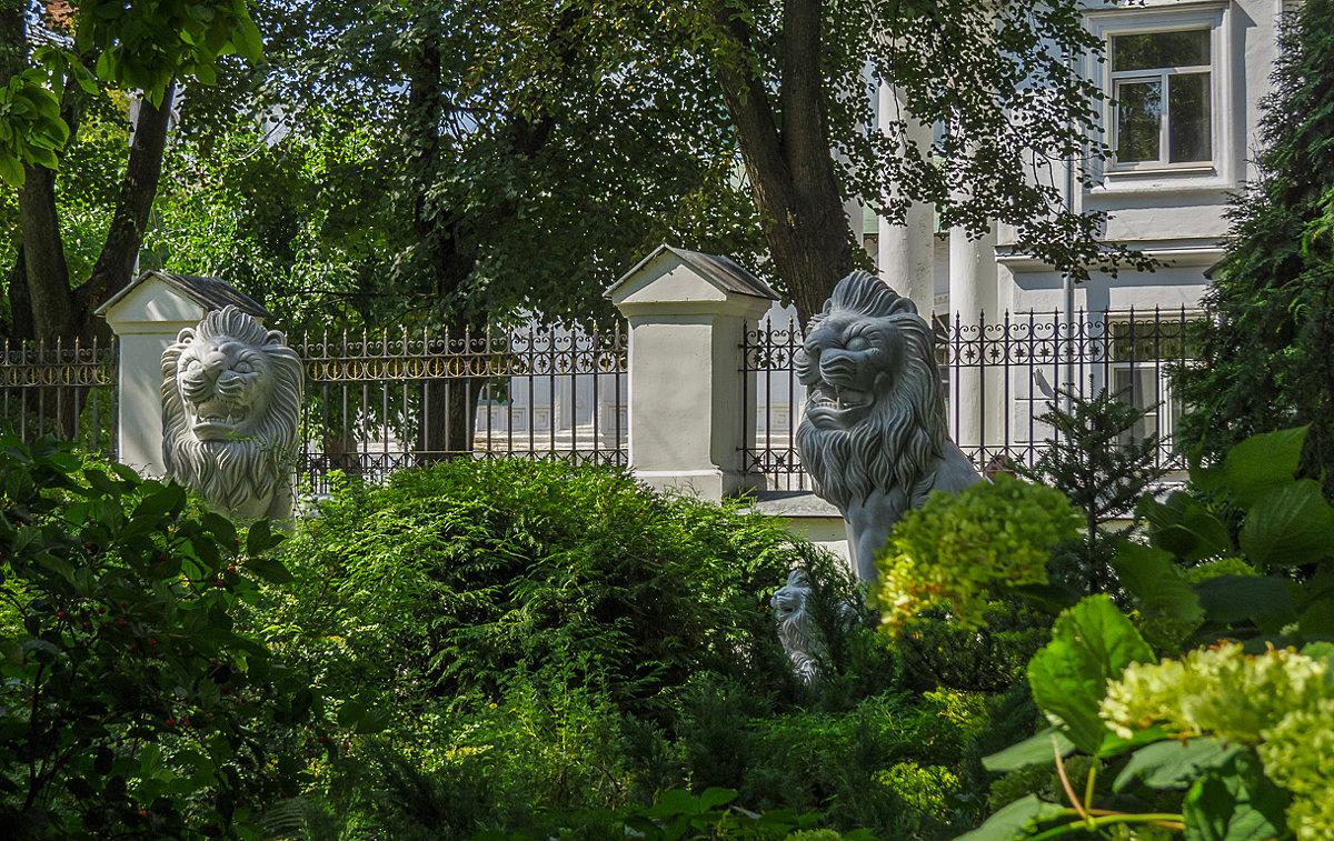 Львы Губернаторского сада - Сергей Цветков