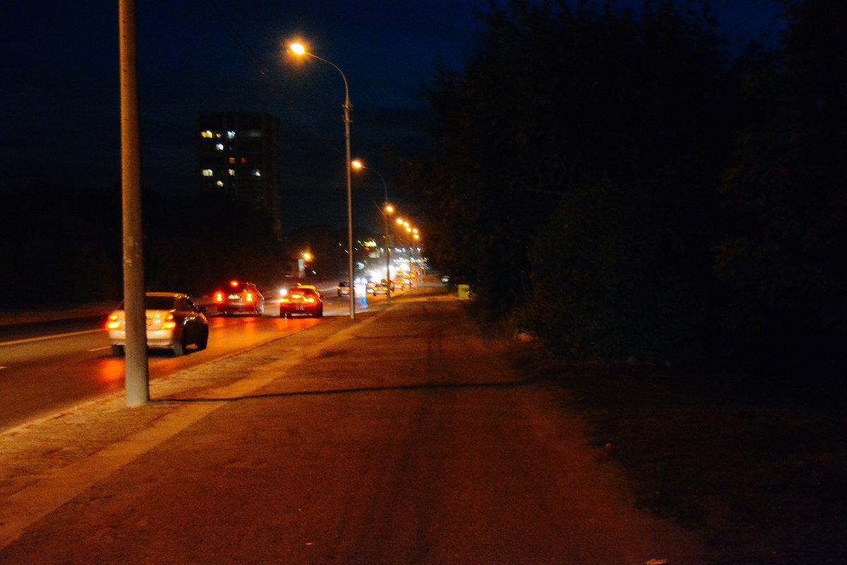 ночная дорога - Света Кондрашова