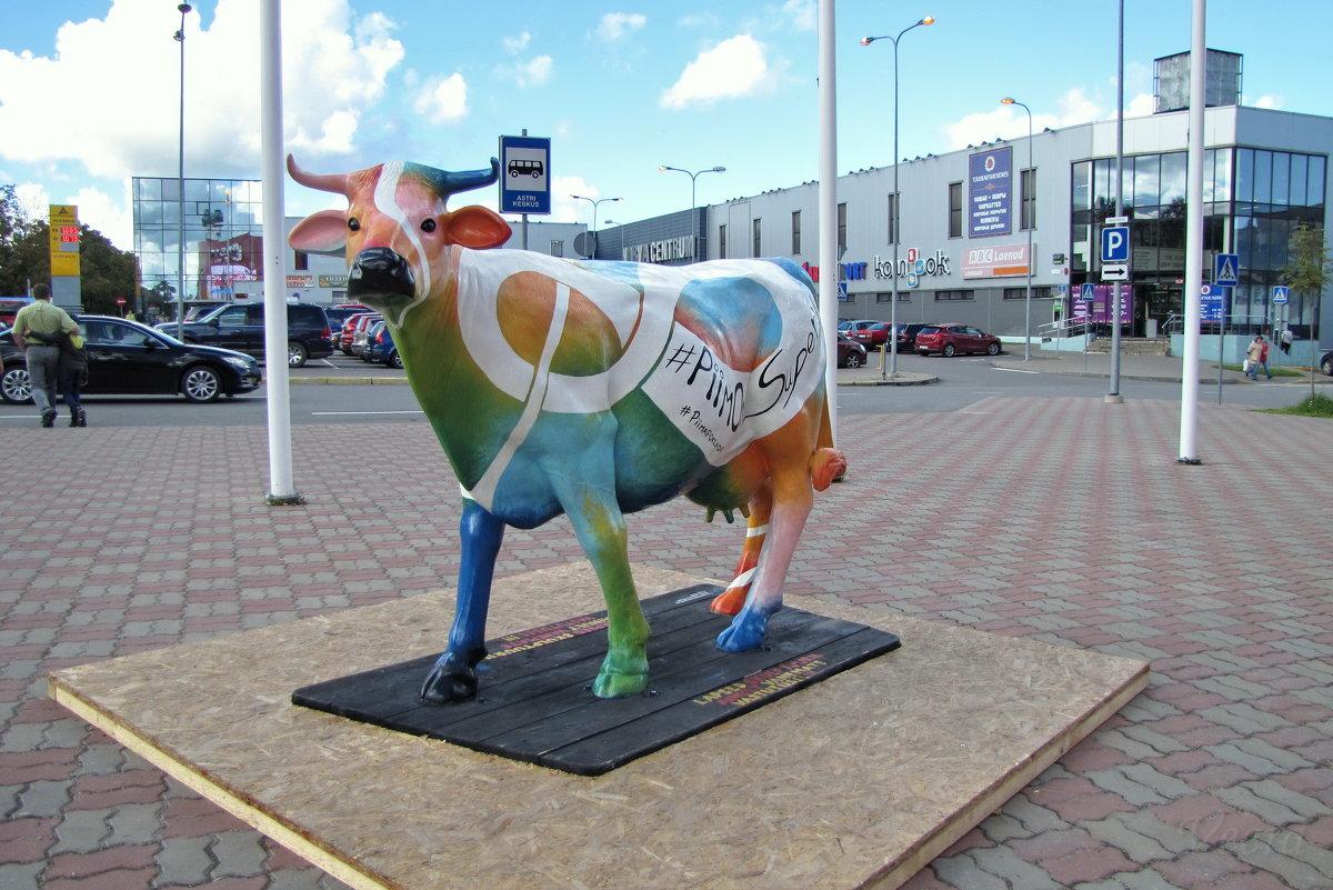 Корова - veera (veerra)